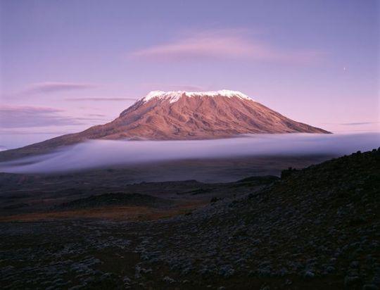 kilimanjaro-snows-gone_11762_600x450