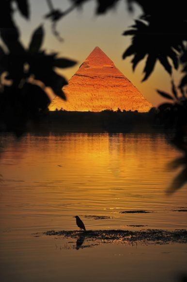 The pyramids of Giza - at night