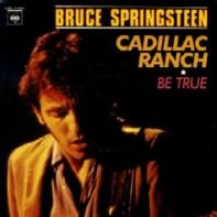 Bruce_springsteen-cadillac_ranch_france