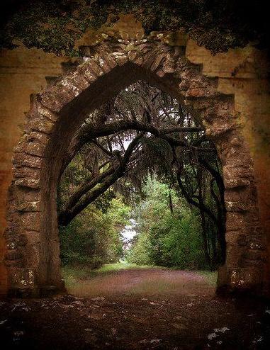 04forest portal in Australia