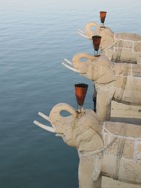 19Elephants at Jagmandir Island, Udaipur, India