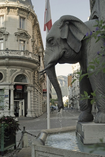 23Fontaine des Eléphants in Chambéry, Savoie, France