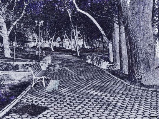 Ion Voicu Park
