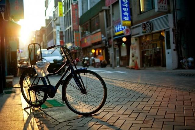 bicycle-bike-street-city-world-485x728