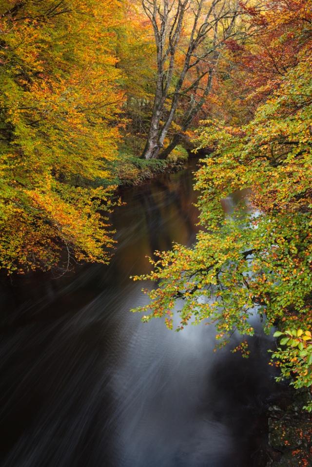 17River Dart, Dartmoor, UK