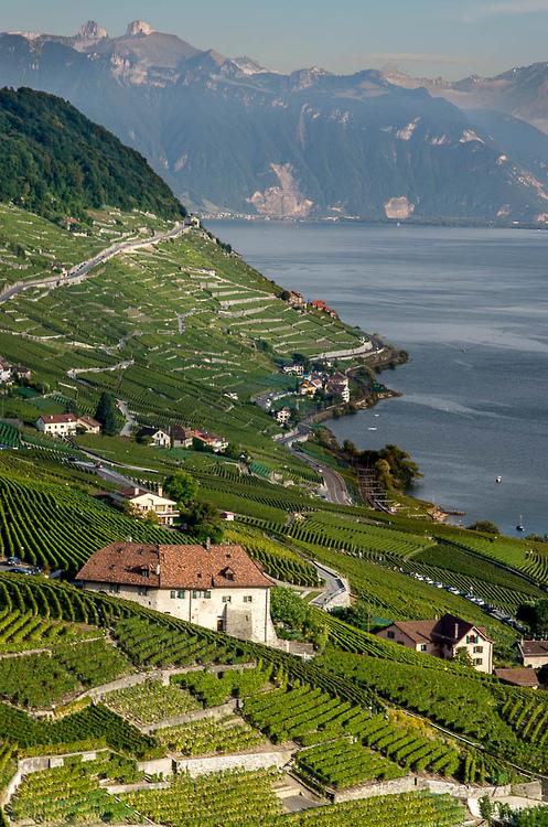 24Lavaux, Switzerland (by MaxatneP)
