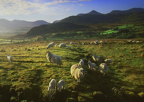 Glencar, Ireland (by Sean Mac Thomas)
