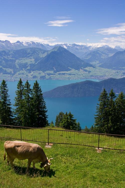 27Rigi - Switzerland (von MeckiMac)