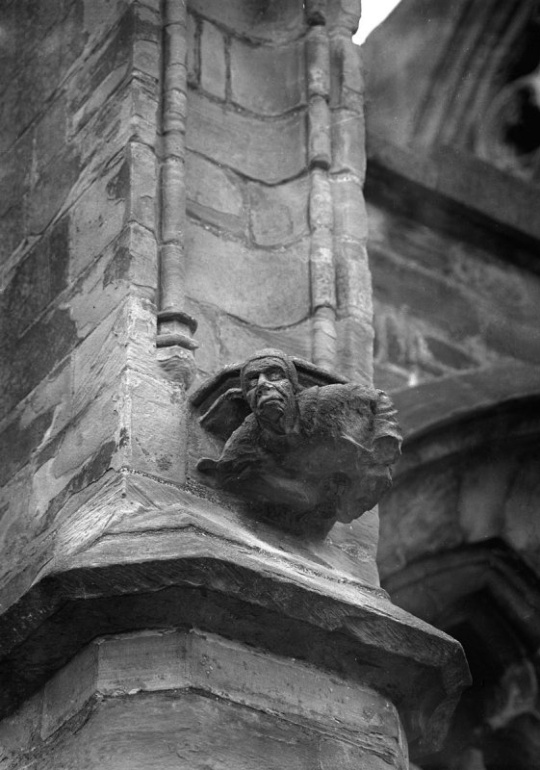 12Melrose Abbey gargoyle - Melrose, Scotland.