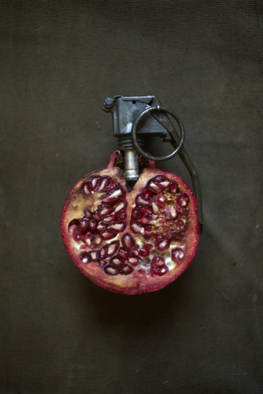 Sarah-Illenberger-Food-Art-8