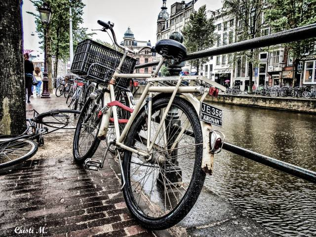 15amsterdam